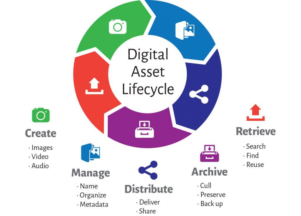 Digital Asset Management Software Solution