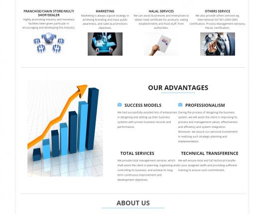 sqvconsultant website